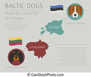 Dogs by country of origin. Baltic dog breeds. Infographic template