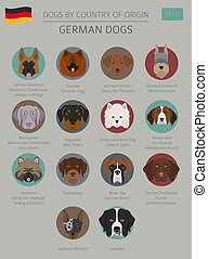 Dogs by country of origin. German dog breeds. Infographic...