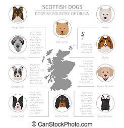 Dogs by country of origin. Scottish dog breeds. Infographic...