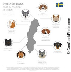 Dogs by country of origin. Swedish dog breeds. Infographic...