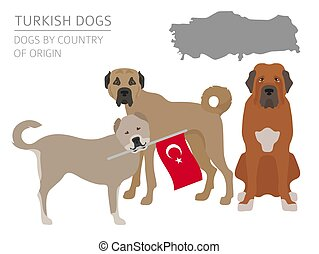 Dogs by country of origin. Turkish dog breeds. Infographic...