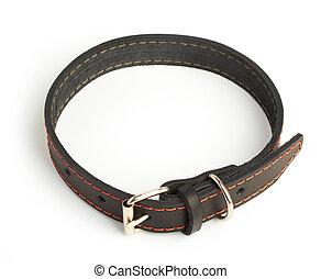 dogs collar