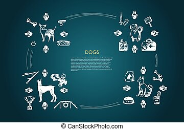 Dogs - different dog breeds with food, bones, collar, footprints, bowl, vet objects vector concept set