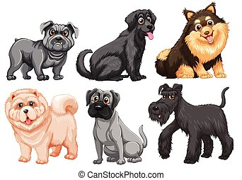 Dogs - Set of different breed of dogs