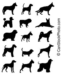 Dogs - Vector illustration of various dog race silhouettes