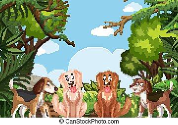 Dogs in jungle scene
