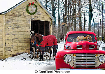 dogs in retro red truck by horses