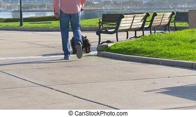 dogs., marche, ralenti, 4k, homme