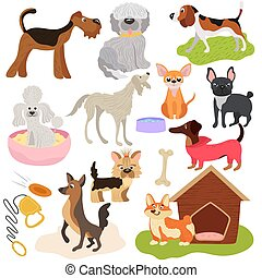 Dogs of different breeds, puppy set cute pets, vector illustration. Funny animals cartoon characters, playful puppy, toys and accessories for domestic pet. Various dogs, hound and terrier