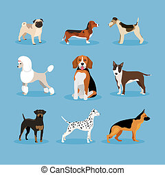vector icons dogs set isolated on blue background