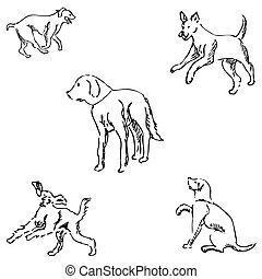 Dogs. Sketch pencil. Drawing by hand Vector