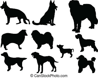 dogs - vector