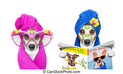 dogs with a beauty mask wellness spa