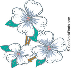 dogwood clipart and stock illustrations 364 dogwood vector eps rh canstockphoto com dogwood branch clipart pacific dogwood clipart