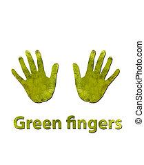 doigts verts