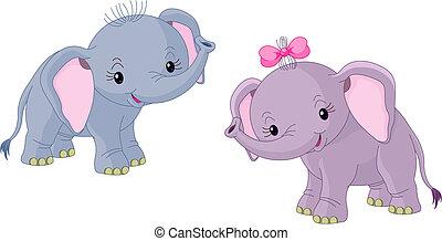 dois, bebês, elefantes