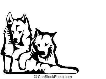 dois, cachorros