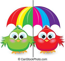 dois, caricatura, pardal, sob, a, coloridos, guarda-chuva