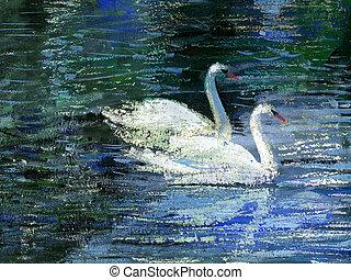 dois, cisnes
