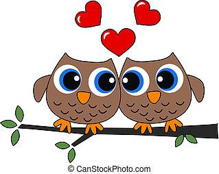 dois, corujas, apaixonadas