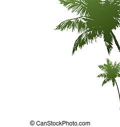 dois, ilustração, coqueiros, verde, colour.vector