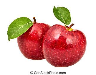 dois, maçãs vermelhas, com, folhas