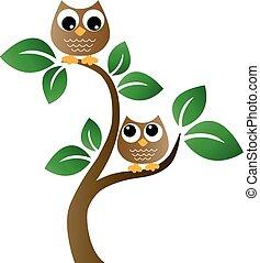 dois, marrom, corujas, em, um, árvore