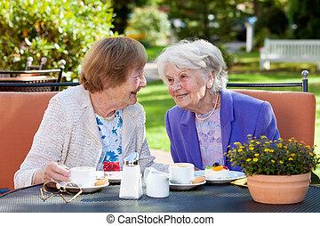 dois, mulheres sêniors, relaxante, em, a, tabela ao ar livre
