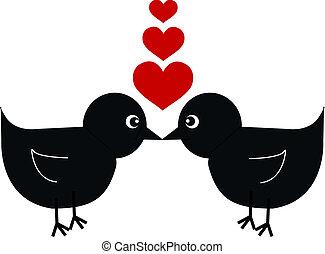 dois pássaros, apaixonadas