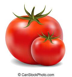 dois, tomates, isolado, branco