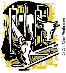 dois, touros, comer, alimentação, através, um, celeiro, churrasqueira