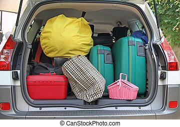 dois, verde, malas, e, muitos, sacolas, carro