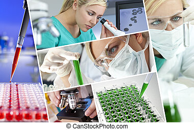 doktor, samica, laboratorium, naukowiec, praca badawcza