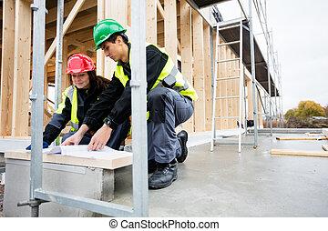 dokument, zbudowanie, analizując, umiejscawiać, wykonuje zawód cieśli