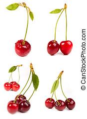 dolce, ciliegia rossa, con, foglie, isolato, bianco