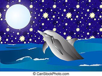 Dolfin in the night