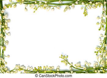 dolina, lilia, ułożyć, odizolowany, papier, tło, poziomy, kwiaty, brzeg