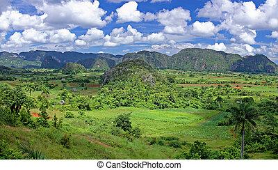 dolina, w, kuba