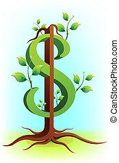 dollar, arbre