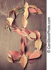 Dollar autumn