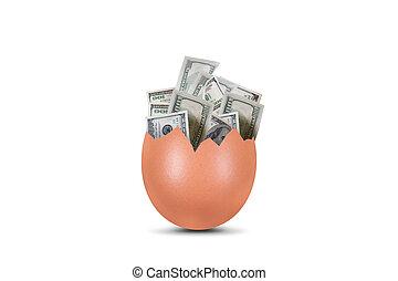 Dollar Banknotes in Broken Egg