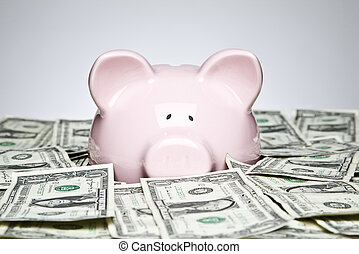 Dollar bills and piggy bank - Piggy bank placed up to its...