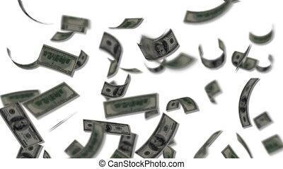 Dollar bills falling - Rain - Wealth - Finance - White Background - Loopable - Full HD