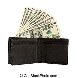 Dollar bills U.S. in wallet