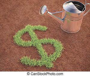 dollar, cultiver