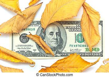 Dollar in autumn leafs