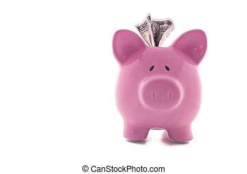Dollar note stuck in piggy bank - Dollar note stuck in pink...