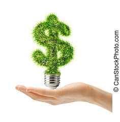 Dollar sign made of grass as bulb in female hand