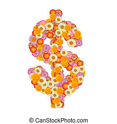 Dollar sign made of straw flower