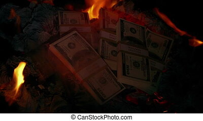 Dollar Stacks Thrown On Fire - Stacks of dollar bills are...